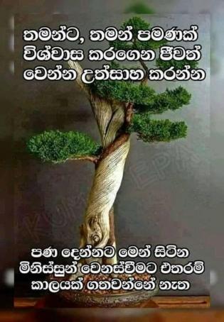 Ruby123, 46, Sri Lanka